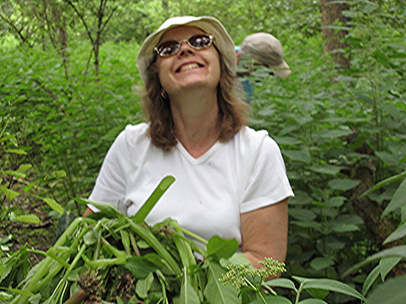 Viv during Himalayan Balsam removal at Harefield Place