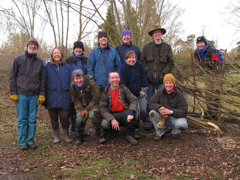 The Earthworks Team hedgelaying in Stoke Poges