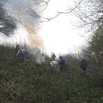 Restoration of chalk grassland habitat at Yoseden Bank in Radnage, near Stokenchurch