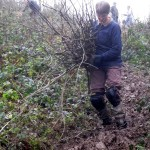 Linda at restoration of chalk grassland habitat at Yoseden Bank in Radnage, near Stokenchurch