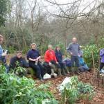 The Earthworks Team Rhododendron bashing in Little Halings Wood, Denham
