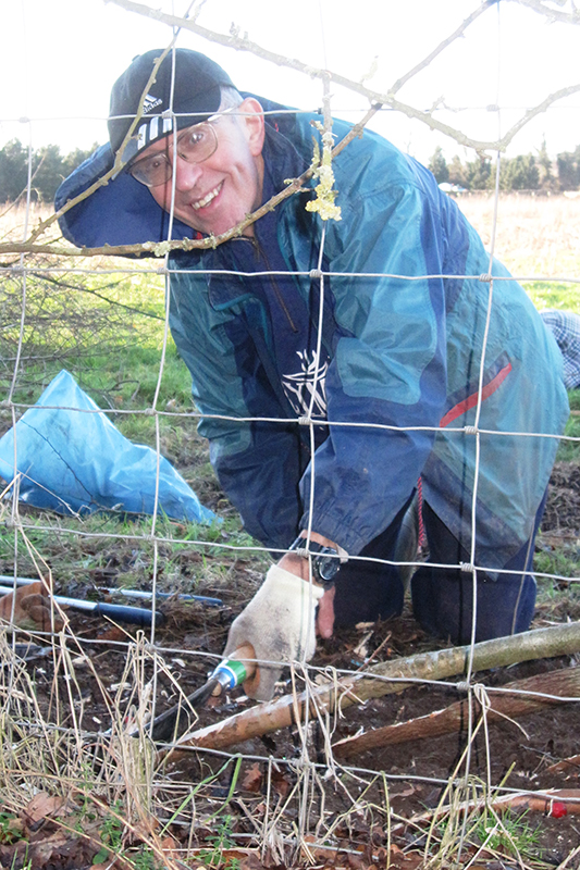 The team continue with the hedge laying at Little Marlow.